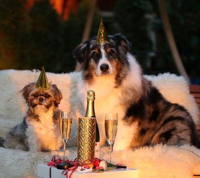 Silvestrovské ubytování na horách, Silvestr s wellness a spa, pobyty na silvestra, dovolená Silvestr, volné hotely a chalupy Silvestr,